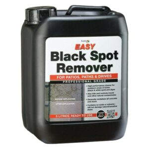 EASY Black Spot Remover